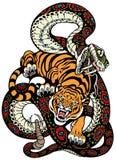Combattimento della tigre e del serpente Fotografia Stock Libera da Diritti