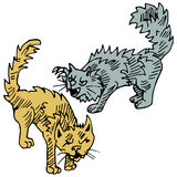 Combattimento di gatti Immagine Stock Libera da Diritti