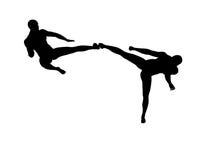 Combattimento di Kung Fu Immagine Stock