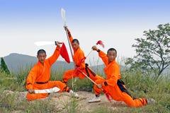 Combattimento munito. Fotografia Stock