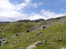In Combe fiel das Tal, das oben zu Thornythwaite schaut Lizenzfreie Stockbilder