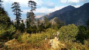 A combinação de nuvens, de árvores e de montanha Imagem de Stock Royalty Free