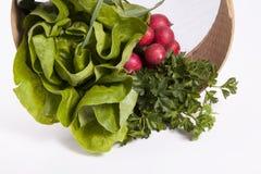 Combinação de vários vegetais Fotografia de Stock Royalty Free