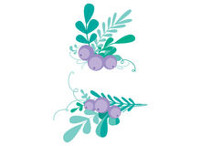 Combinación linda del vector con los elementos florales a mano y las ramas Diseño simple elegante Ilustración del vector Fotografía de archivo libre de regalías