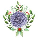 Combinaison avec du charme d'aquarelle peinte à la main des fleurs et des feuilles d'isolement sur le fond blanc Photographie stock libre de droits