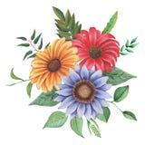 Combinaison avec du charme d'aquarelle peinte à la main des fleurs et des feuilles d'isolement sur le fond blanc Photos libres de droits