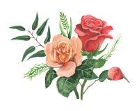 Combinaison avec du charme d'aquarelle peinte à la main des fleurs et des feuilles d'isolement sur le fond blanc Images stock
