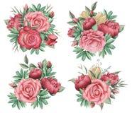 Combinaison avec du charme d'aquarelle peinte à la main des fleurs et des feuilles, d'isolement sur le fond blanc Photographie stock libre de droits