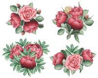 Combinaison avec du charme d'aquarelle peinte à la main des fleurs et des feuilles, d'isolement sur le fond blanc Photo stock