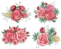 Combinaison avec du charme d'aquarelle peinte à la main des fleurs et des feuilles, d'isolement sur le fond blanc Photo libre de droits