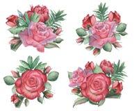Combinaison avec du charme d'aquarelle peinte à la main des fleurs et des feuilles, d'isolement sur le fond blanc Photos stock