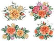 Combinaison avec du charme d'aquarelle peinte à la main des fleurs et des feuilles, d'isolement sur le fond blanc Photographie stock