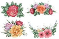 Combinaison avec du charme d'aquarelle peinte à la main des fleurs et des feuilles, d'isolement sur le fond blanc Image libre de droits