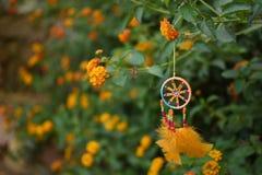 Combinaison des nuances oranges Photographie stock libre de droits