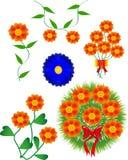Combinatie bloemen Stock Fotografie