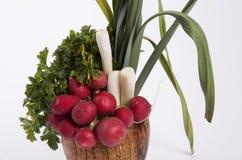 Combinatie diverse groenten Stock Afbeeldingen