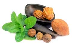 Combinaties kruiden geneeskrachtige vruchten met munt royalty-vrije stock afbeeldingen
