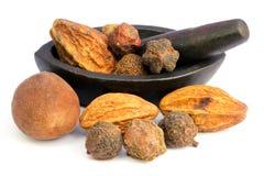 Combinaties kruiden geneeskrachtige vruchten met uitstekend mortier stock foto's