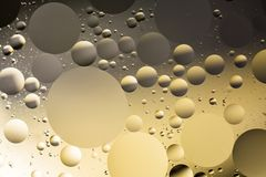 Mixing water and oil, beautiful color abstract background based on circles and ovals. A combination of oil and water, a fantastic abstract macro background with Royalty Free Stock Images