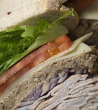 Combination sandwich Royalty Free Stock Photos