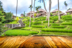 Combination of wooden front with blurred balinese tropical village Royalty Free Stock Photography
