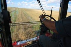 Combinazione del campo di grano Fotografie Stock Libere da Diritti