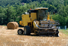 Combine. In a cornfield in summer stock image
