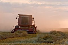Combine. In a wheat field Royalty Free Stock Photo