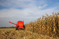 Combine. Hard work in village, Poland Royalty Free Stock Images
