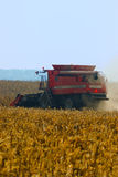 Combine. Harvesting a wheat field Royalty Free Stock Image