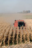 Combine and Corn. Red Combine Harvesting Ripe Corn Royalty Free Stock Images