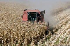 Combine and Corn Stock Photo