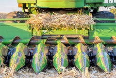 Combine with corn stalks on it Stock Photos