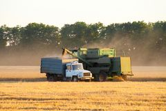 A combine dumps soybeans into a semi tractor-trailer at sundown stock photography