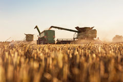 Combine el grano de recarga en el tractor remolque Imagenes de archivo