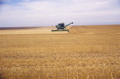 Combine in field Stock Image