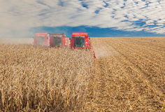 Combine in a field Royalty Free Stock Photography