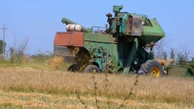 Combine in the field stock video