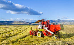 Combine in the Field of Wheat Royalty Free Stock Photos