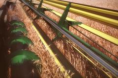 Combine grain harvester  Stock Photo