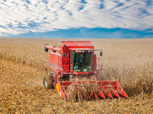 Combine  at the harvest in autumn Royalty Free Stock Photo