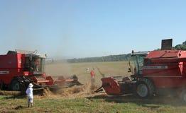 Combine harvest wheat Royalty Free Stock Image