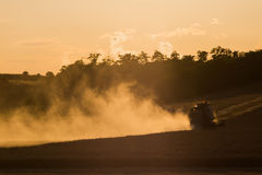 Combine harvested grain at sunset Royalty Free Stock Image