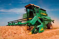 Combine harvester. Low angle view of modern combine harvester working on crop, blue sky background Stock Photo