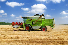 Combine harvester. Working on the field royalty free stock images