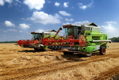 Combine harvester. Two combine harvesters working on the field stock photos