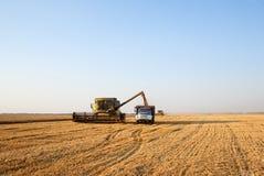 Combine harvester Stock Image
