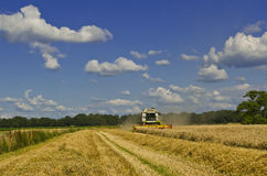 Combine harvester Royalty Free Stock Photos