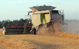 Combine harvester. Stock Images