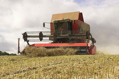 Combine Harvester. A combine harvester harvesting crops on a U.K. farm Royalty Free Stock Images